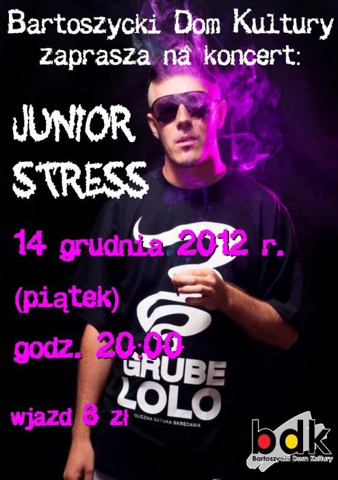 Koncert - Junior Stress